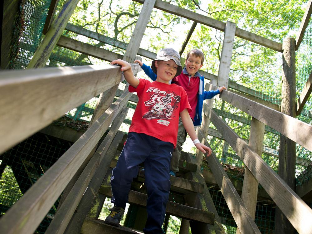 children enjoying adventure playground