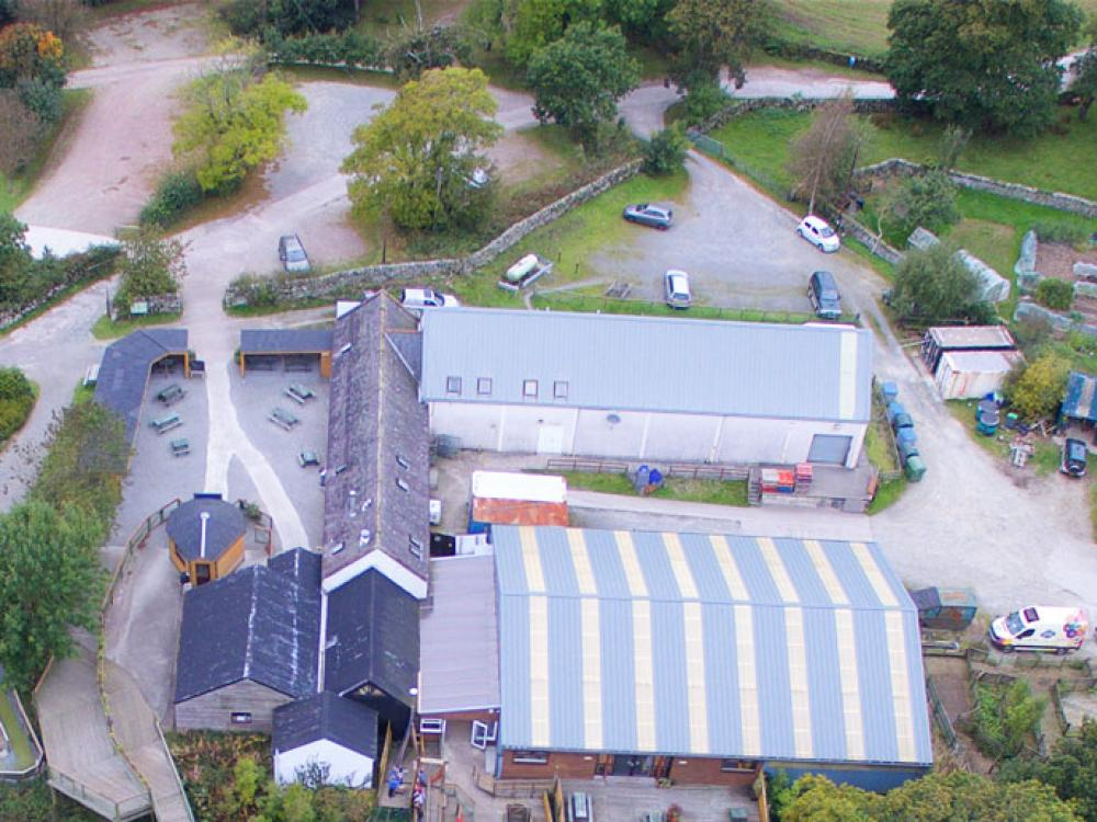aerial shot of cream o galloway